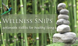 Introducing Wellness SNiPs: Actionable Tidbits for Healthy Living